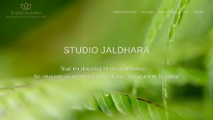 Capture du site web studiojaldhara.com